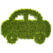 Car shaped grass patch