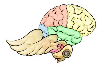 brain eith wings