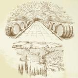 Fototapety vineyard - hand drawn set
