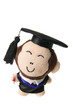 Soft Toy Graduation Monkey