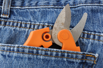 Pruning Shears in Blue Jeans Pocket