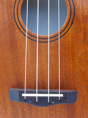 close-up ukulele