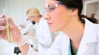 Young Research Assistants in Medical Laboratory