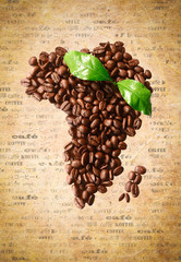 Coffee Bean Africa