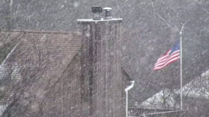 Snowy , trees and US flag on the background