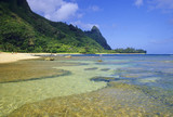 Fototapeta hawaje - raj - Plaża