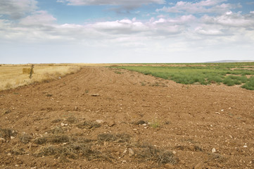 Fallow field in an agricultural landscape in Spain