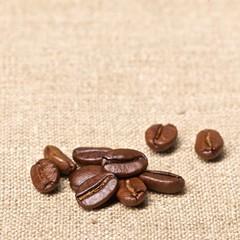 Kaffeebohnen – Makro