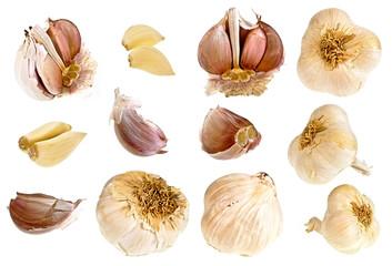 garlic collection