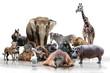 Fototapeten,tier,biest,flußpferd,elefant