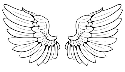 pair of wings