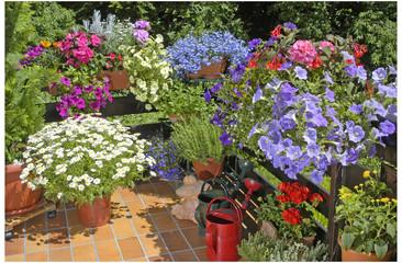 Balkon mit Sommerblumen.