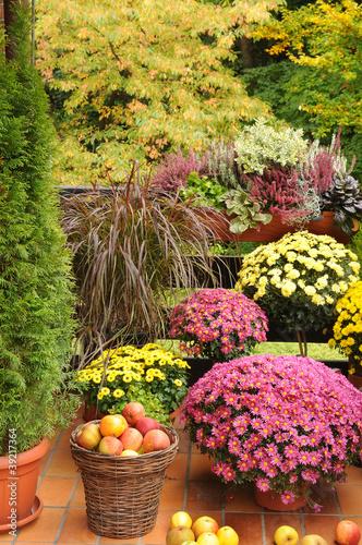 balkon mit herbstblumen stockfotos und lizenzfreie bilder auf bild 39217364. Black Bedroom Furniture Sets. Home Design Ideas
