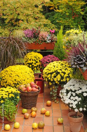 balkon mit herbstblumen stockfotos und lizenzfreie bilder auf bild 39217509. Black Bedroom Furniture Sets. Home Design Ideas