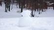 construction of a snowman