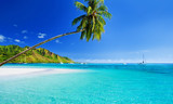 Fototapety Palm tree hanging over lagoon with blue sky