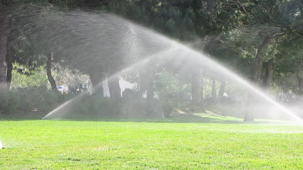 Water sprinkler showering grass in park
