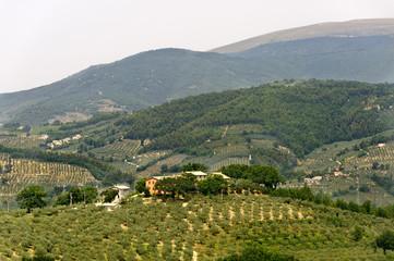 Landscape in Umbria near Foligno