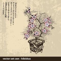 ZEN Hibiskus - Hintergrund - Vektor