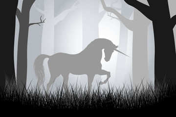 fairy unicorn in the forest