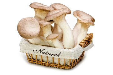 Fresh mushrooms in a basket. King trumpet.