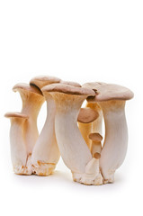 King trumpet. Fresh mushrooms on a white background.