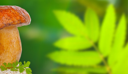 Risotto ai funghi porcini