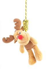hanging on noose