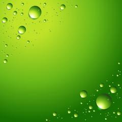 waterdrops on green ground