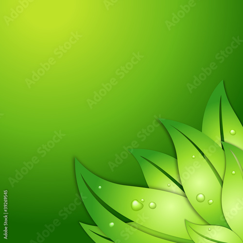 green vector leafs with waterdrops