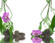 décor zen, orchidée, galets, bambou