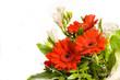 Blumenstrauß freigestellt