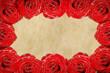 Detaily fotografie Rose frame