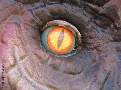 Dinosaur eye, vertical pupil.