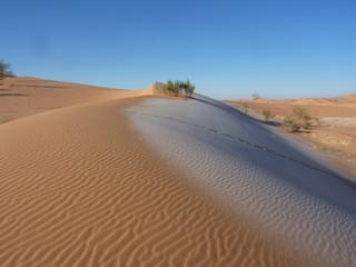 duna ghiacciata