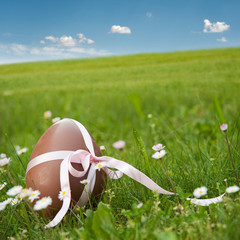 chocolate easter egg in landscape