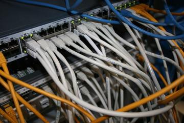 Brassage informatique - Informaticien