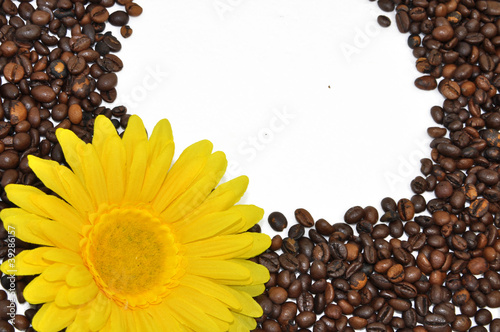 Abstract background of coffee