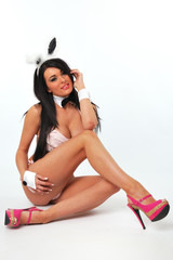 sexy long legged bunny girl sitting