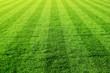 Leinwandbild Motiv gruens fussballfeld