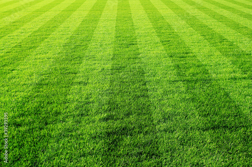 Leinwanddruck Bild gruens fussballfeld