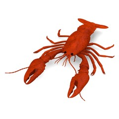 3d render of dead crayfish