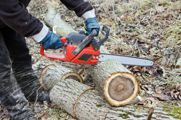 lumberman working closeup II