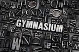 gymnasium poster