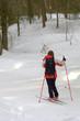 Ski dans les bois