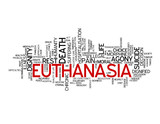 EUTHANASIA Tag Cloud (death pain agony suicide medicine dignity) poster