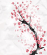 cherry blossom with space for text