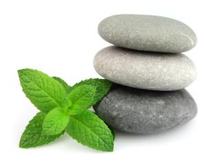 Fresh mint on the stones
