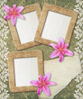 Grunge frame with lily and paper