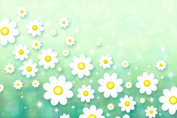 Spring background with chamomiles